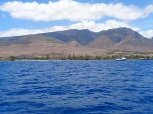MauiView